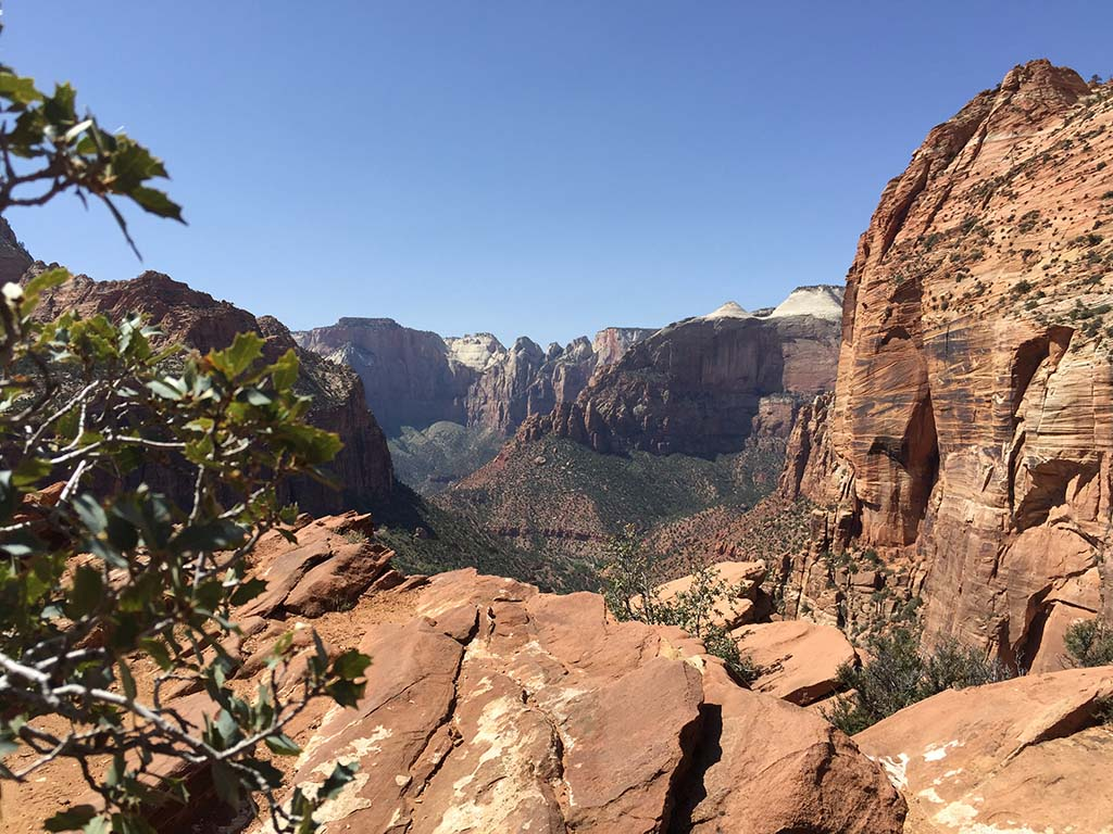 Looking out over Zion. Photo by Kay Kirchner.