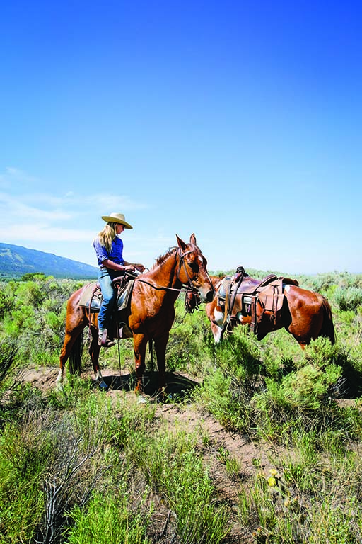 Since being purchased by the Nature Conservancy, Zapata Ranch has become a model for a new style of ranching, one that benefits the land, the wildlife, the livestock and the public.