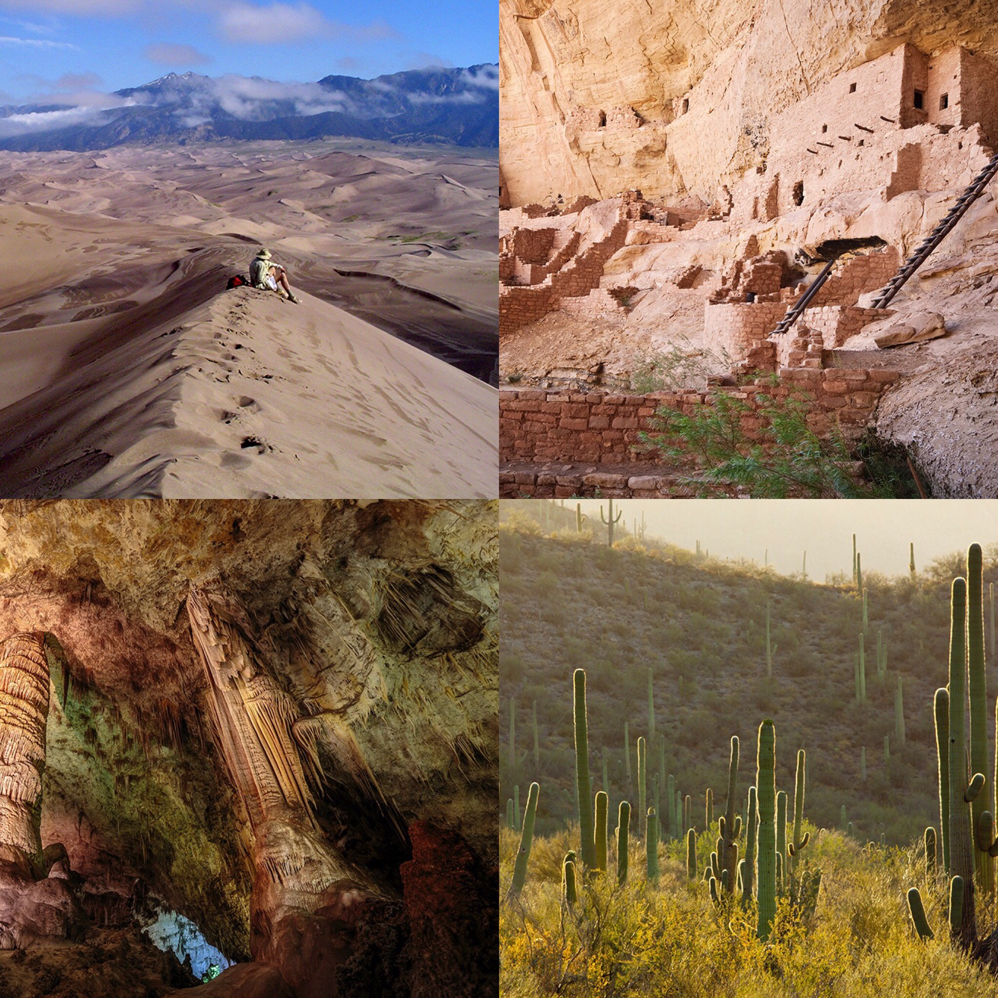 Clockwise from top left: Colorado's Great Sand Dunes National Park and Preserve; ancient ruins at Mesa Verde; a sea of cactus at Saguaro National Park; inside Carlsbad Caverns.