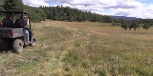 Watch: Elk Hunting in Northern New Mexico